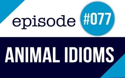 #077 Animal Idioms in English ESL Story