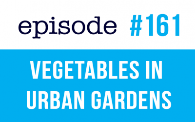 #161 English Vocabulary – Vegetables in Urban Gardens